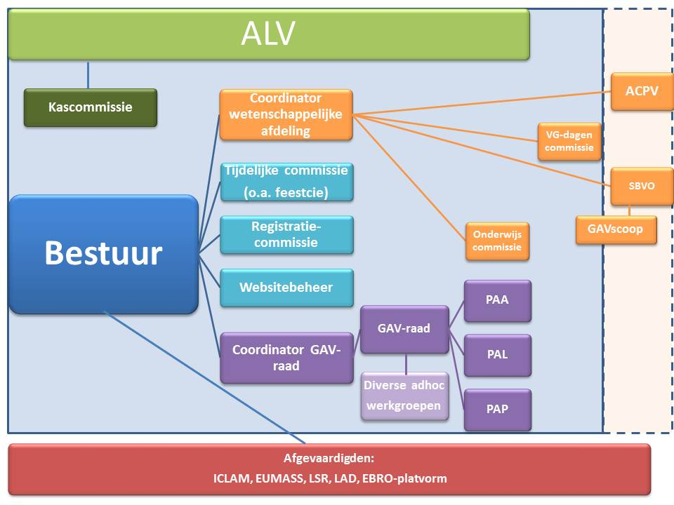 Organogram GAV